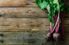 Bunch of fresh organic beetroot on wooden background. Concept of diet, raw, vegetarian meal. Farm, rustic and country. Style Royalty Free Stock Photos