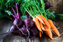 Bunch of fresh organic beetroots and carrots. On wooden rustic table Stock Image