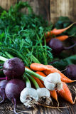Bunch of fresh organic beetroots, garlic and carrots. On wooden rustic table, different types of root vegetables Stock Photography