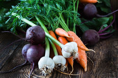 Bunch of fresh organic beetroots, garlic and carrots. On wooden rustic table, different types of root vegetables Royalty Free Stock Photography