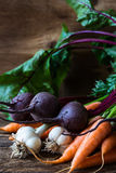Bunch of fresh organic beetroots, garlic and carrots. On wooden rustic table, different types of root vegetables Royalty Free Stock Images