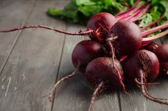 Bunch of fresh organic beets on rustic wooden table. Selective focus, copy space Royalty Free Stock Photos