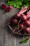 Bunch of fresh organic beets on rustic wooden table. Selective focus Stock Images