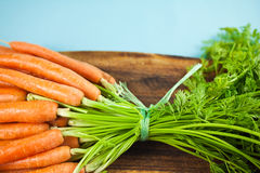 Bunch of fresh organic carrots Stock Photography