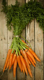 Bunch of fresh organic carrots at market Stock Photos