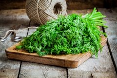 Bunch of fresh organic dill on a cutting board with rope Stock Image