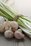 Bunch of fresh organic green onions and garlic Royalty Free Stock Photography