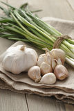 Bunch of fresh organic green onions and garlic Royalty Free Stock Photo