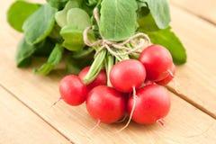 Bunch of fresh organic radish Stock Photography