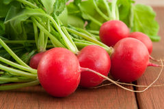 Bunch of fresh organic radish. Bunch of fresh red organic radish on wooden background Stock Photo