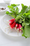 Bunch of fresh organic radish. On white plate Stock Photo