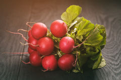 Bunch of fresh organic radish on wood table. Vintage toned Royalty Free Stock Photography