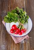 Bunch of fresh organic radish on wooden background. Bunch of fresh organic radish on a vintage metal plate on rustic wooden background royalty free stock photography