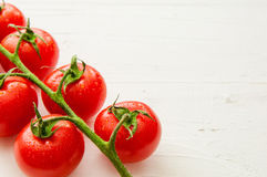 Bunch of fresh organic tomatoes  on white background. Bunch of fresh tomatoes  on white background Stock Photo
