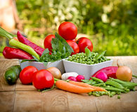 Bunch of fresh organic vegetables Royalty Free Stock Photo