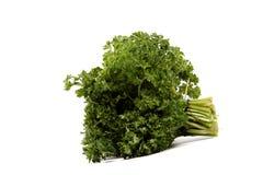 Bunch of fresh parsley. Royalty Free Stock Photo