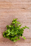 Bunch of fresh parsley Stock Photography