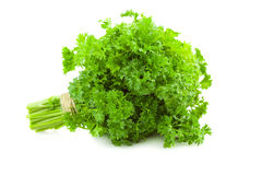 Bunch of fresh Parsley /  isolated on white Royalty Free Stock Photography