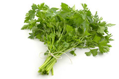 Bunch of fresh parsley Royalty Free Stock Photos