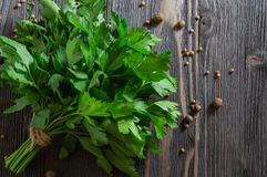 Bunch of fresh parsley and spices on dark wooden background royalty free stock photos