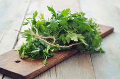 Bunch of fresh parsley Stock Images