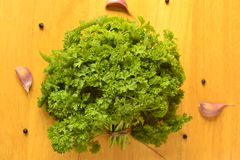 Bunch of fresh parsley Stock Image