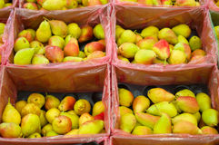 Bunch of fresh pears in boxes in shop Royalty Free Stock Photo