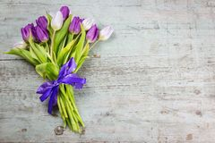 Bunch of fresh purple tulips tied with a bow. Bunch of fresh purple tulips tied with a decorative ribbon and bow lying to the side on wood background with copy Stock Photography