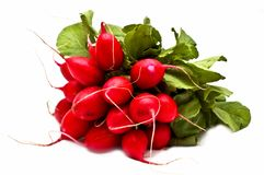 Bunch of fresh radish Royalty Free Stock Photos