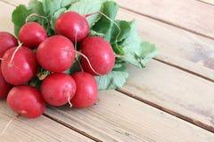 Bunch fresh radish. Detail of the bunch fresh radish Stock Image