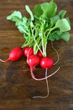 Bunch of fresh radish. Food closeup Royalty Free Stock Photos