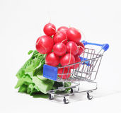 Bunch of fresh radish with leaves in shopping cart. Bunch of fresh pink radish with leaves in shopping cart on white background Royalty Free Stock Photography