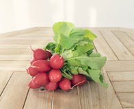 Bunch of fresh radish lies on a light wooden table. A bunch of fresh radish lies on a light wooden table Royalty Free Stock Image