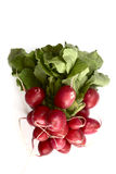 Bunch of fresh radish on a neutral background. Bunch of fresh radish on a white background Royalty Free Stock Image