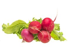Bunch fresh radish. Bunch of fresh radish over white background Stock Images