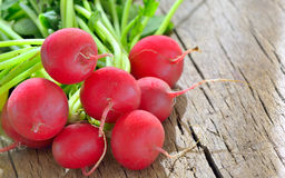 Bunch of fresh radish. On rustic wooden background Royalty Free Stock Image