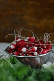 Bunch of fresh radish. On the table Royalty Free Stock Photography