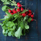 Bunch fresh radish on table. Food top view Royalty Free Stock Photos
