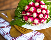 Bunch of fresh radish on white plate closeup, wooden background. Red natural european radishes. Freshly harvested organic vegetables Royalty Free Stock Photography