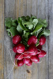 Bunch of fresh radish on a wood. En background Royalty Free Stock Image