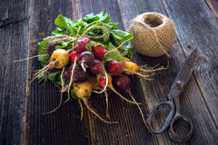 Bunch of fresh radish. On wooden background Royalty Free Stock Photo