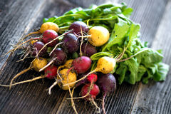 Bunch of fresh radish. On wooden background Royalty Free Stock Images