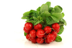 Bunch of fresh radishes. On a white background Stock Photos