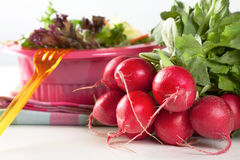 Bunch of fresh radishes. Bunch of fresh red radishes with a knife alongside a bowl of green salad during preparation in the kitchen Stock Image