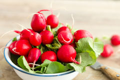 Bunch of fresh radishes in a bowl Stock Photography