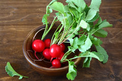 Bunch of fresh radishes in a bowl. Vegetables Stock Photo