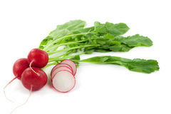 A bunch of fresh radishes Royalty Free Stock Photos