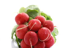 Bunch of fresh radishes isolated. Handful of red radishes and green leafs Royalty Free Stock Photos