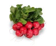 Bunch of fresh radishes, isolated. On white background Royalty Free Stock Image