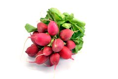A bunch of fresh radishes with leaves. On white background Stock Image